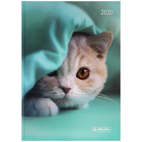 Herlitz Buchkalender Rainbow Katze 2020 A6