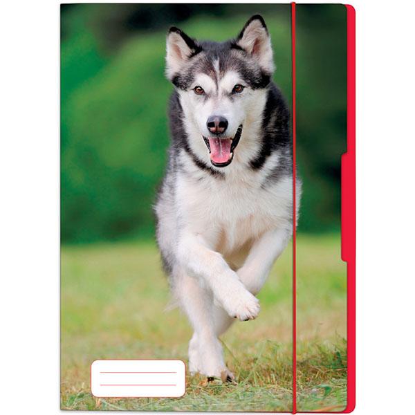 Herlitz Sammelmappe Hund DIN A3