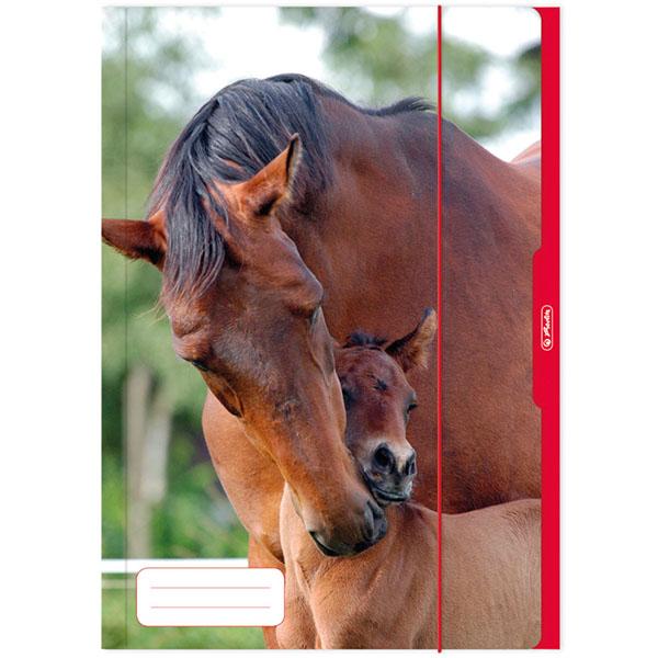 Herlitz Sammelmappe Pferde DIN A3