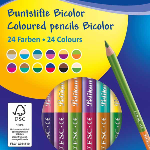 """12 Pelikan Buntstifte /""""Bicolor/"""" 12 Stifte mit 24 verschiedenen Farben"""